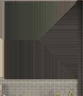 Window Wall54