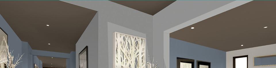 Ceiling6